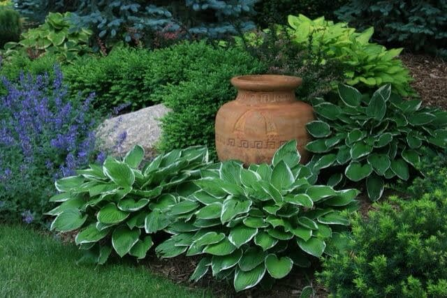 Residential Landscaping Services